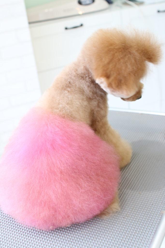 ピンクでカラーリング