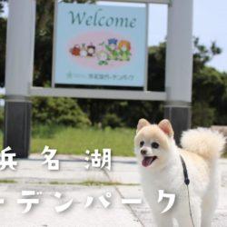 浜名湖ガーデンパークを愛犬と散歩!
